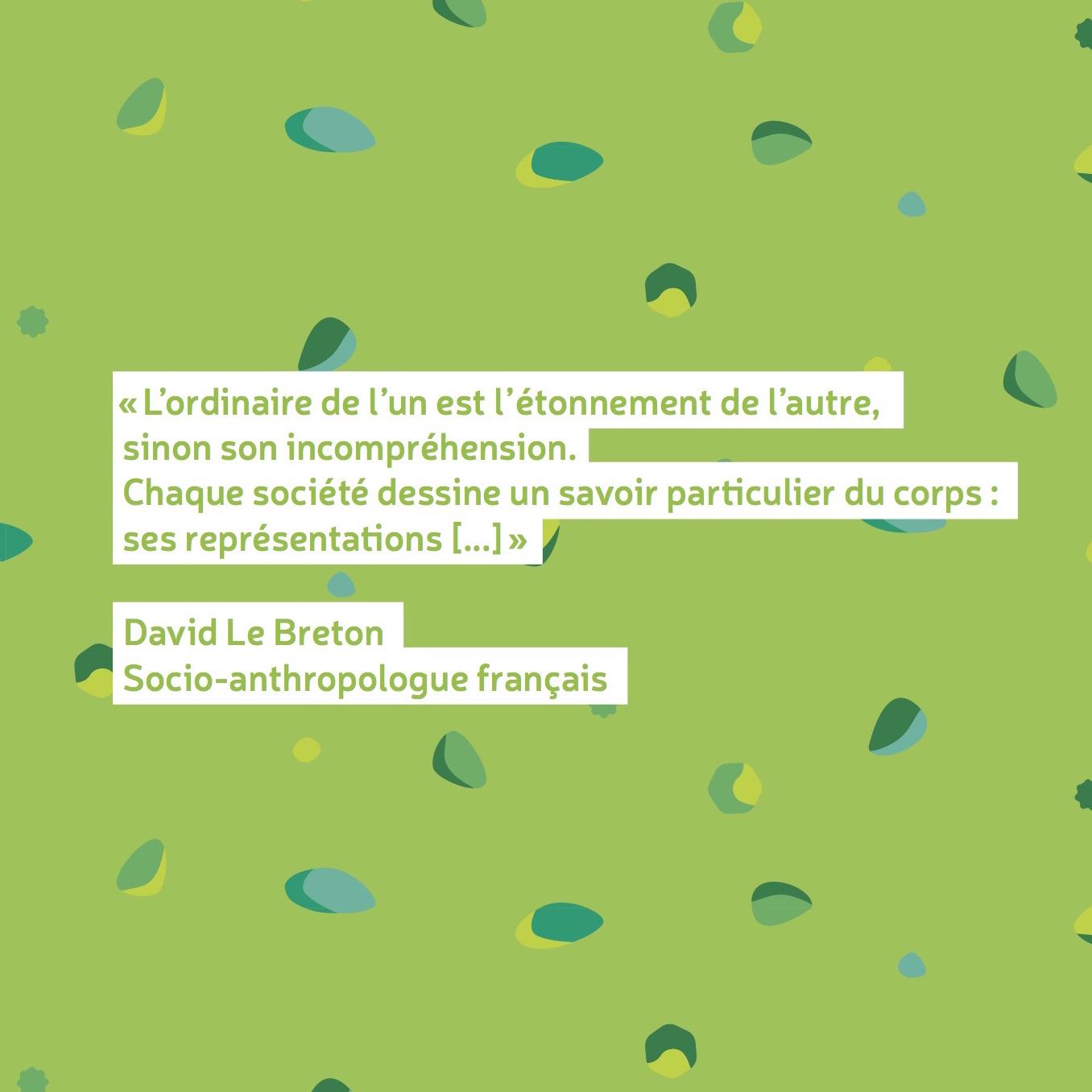 belgik-mojaik-outil-pedagogique-jeunes-cultures-du-corps-citation