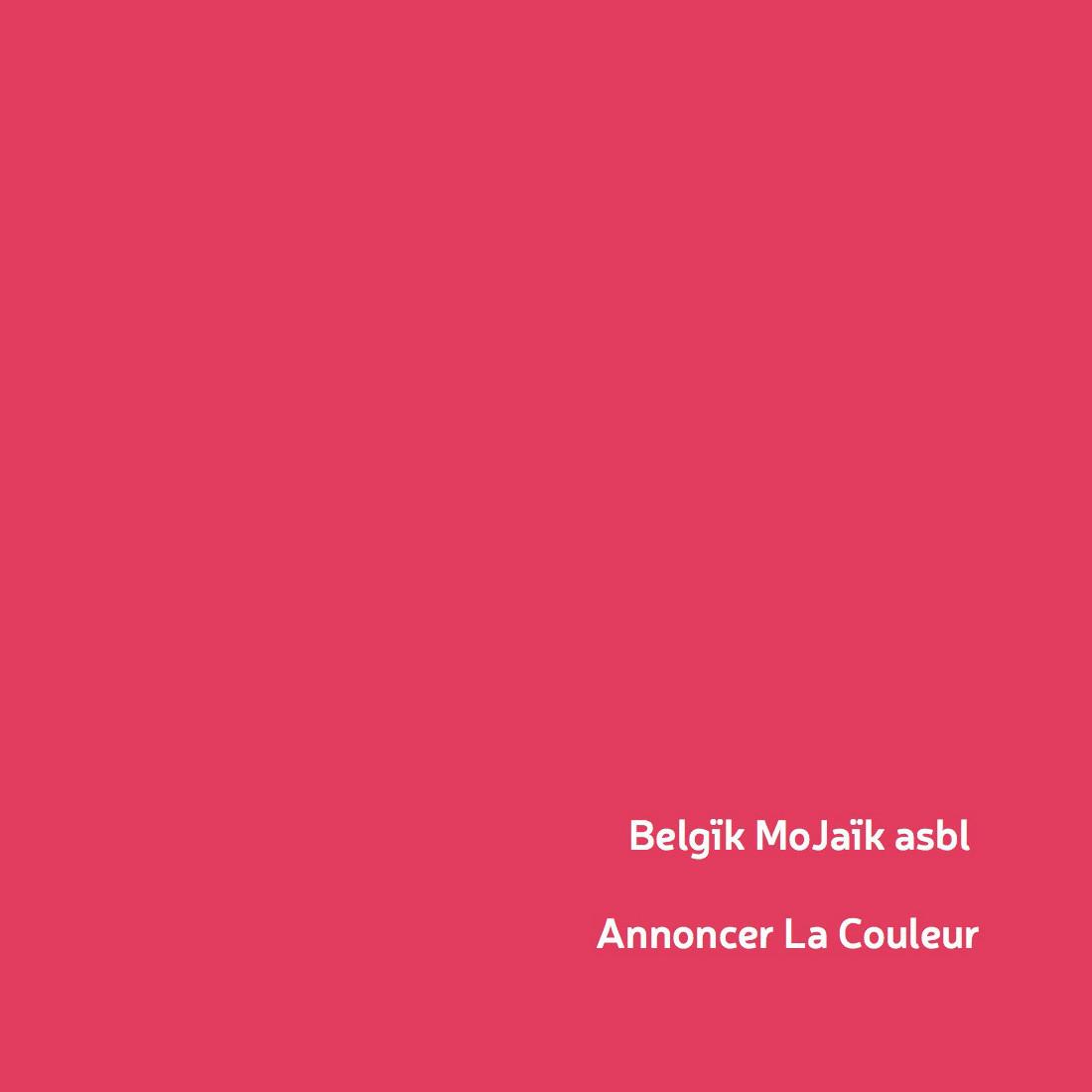 belgik-mojaik-outil-pedagogique-jeunes-cultures-du-corps-illu-2-partenaire